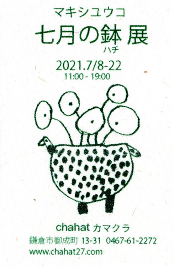七月の鉢-2